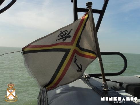 BNS-Flag