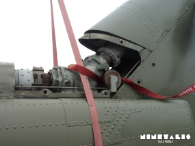 Huey-W-tailfrontleft