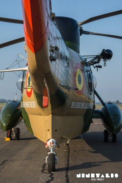seaking-baf-rs02-w-aircraftbehind