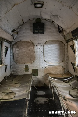 w-h19-cargovert2