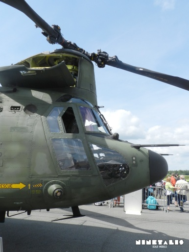 chinook-w-frontright